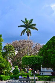 Ocampo, Tamaulipas            -maybudar-