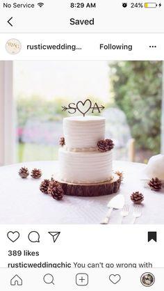 Cake winter cake