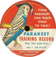 my friend in high school had one of these records. we played it over and over for his bird and it did nothing but drive us insane. hahaha!