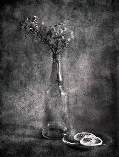 #still #life #photography • photo: В Ч/Б | photographer: Ирина | WWW.PHOTODOM.COM