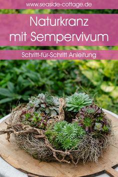 Cactus, Christmas Wreaths, Christmas Crafts, Sempervivum, Cheap Landscaping Ideas, Modern Flower Arrangements, Garden Shop, Art For Kids, Diy And Crafts