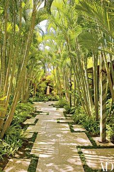 Wonderful Tropical Garden Pathway Landscape - Looking for a Various Garden Pathway Landscape Tropical Landscaping, Modern Landscaping, Landscaping Ideas, Tropical Gardens, Landscaping Software, Hawaiian Gardens, Side Yard Landscaping, Courtyard Landscaping, Landscaping Contractors