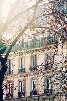 Afternoon light in Montmartre soft blue and grey tones