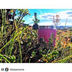 @lifeventureukのInstagram写真をチェック • いいね!27件