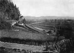 An early view of Elysian Park at its Buena Vista Street (Broadway) entrance. Courtesy of the Photo Collection, Los Angeles Public Library.
