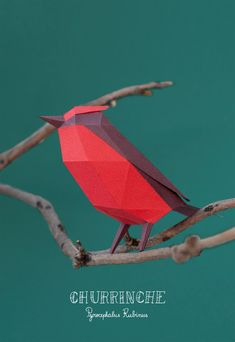 Animals Paper Art by Estudio Guardabosques