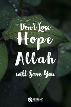 Hope in Islam / Hope in the Quran - How to Create Hope in Islam - Don't Lose hope Allah will save you. This Short Quran Lesson is about how to create Hope in a practical way to help yourself. Islamic Motivation and inspiration. Quran Quotes Love, Quran Quotes Inspirational, Beautiful Islamic Quotes, Allah Quotes, Muslim Quotes, Religious Quotes, Words Quotes, Qoutes, Motivational Quotes