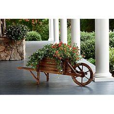 Garden Oasis Wheelbarrow Planter