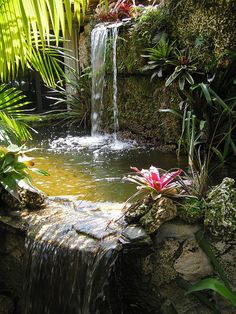 You have enough height to create a waterfall (Make it child-friendly by filtering over pebbles instead of a pool - into an out-of-reach tank with a pump) ..... [cooperman courtyard garden | Flickr - Photo Sharing]