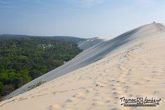 la dune du pilat s'enfonce dans la forêt des Landes   par thomaslombard.com