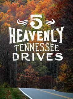 Memphis For Photographers: 12 Most Iconic Places To Visit 5 Heavenly Tennessee Drives. Request your copy of the 2016 Tennessee Vacation Guide to learn more. Vacation Places, Vacation Destinations, Vacation Trips, Vacation Spots, Day Trips, Places To Travel, Places To See, Vacation Ideas, Family Vacations