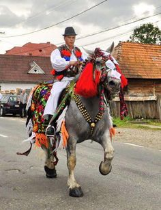 Traditions in Maramures. Decorated horse for the wedding.