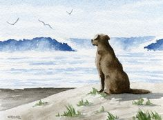 Chocolate Lab at The Beach - This is a professional open edition Giclee' print by artist David J. Rogers.  Esty $12.50