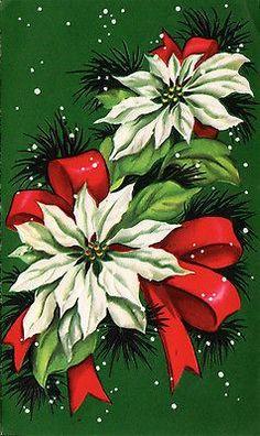 vintage Christmas card, poinsettias