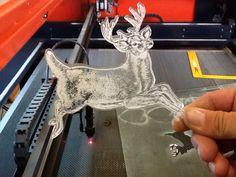 Acrylic deer and cutout!