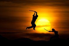 Martial arts and Fine arts