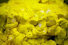 Reject Peeps. Click through to see how Peeps are made!