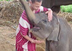 Elephant Village Experience