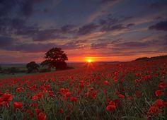 Sunrise in Faringdon, England