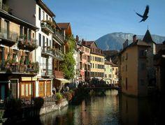 Annecy: Oiseau en plein vol avec vue sur le canal du Thiou, le palais de l'Île (vieilles prisons) abritant le musée de l'Histoire d'Annecy, le petit pont, le quai de l'Île (berge fleurie), les maisons aux façades colorées et la montagne en arrière-plan - France-Voyage.com