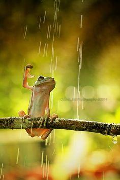 rain by odenk | denlArt
