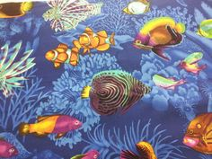 Fabric Cotton Saltwater Fish... from GabbysQuiltsNSupply on Wanelo