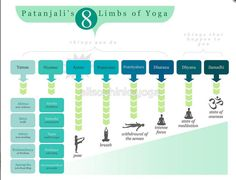 """The 8 limbs of yoga. The last 3 are called """"Samyama"""" (the ultimate goal of meditation, where the object dissolves on the subject)"""
