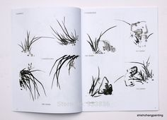 """Chinese Painting Book """"Learn to Paint Orchid from Master Wu Changshuo Qi Baishi"""" Chinese Brush, Chinese Art, Painted Books, Chinese Painting, Learn To Paint, Brush Strokes, Asian Art, Animals And Pets, Watercolor"""