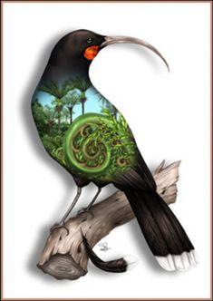 NZ Artist Sophie Blokker's Huia limited edition print from her native NZ birds range. Nz Art, Art For Art Sake, Art Maori, Tui Bird, Maori Symbols, Maori Patterns, Zealand Tattoo, Polynesian Art, Maori Designs