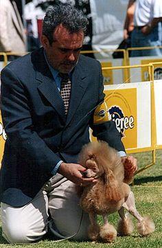 Ramón Ricardo, manejador profesional