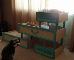 She used drawers to make a cat tower for her furry friends, and they absolutely love it!