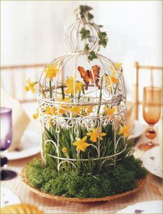 Spring Centerpiece: daffodils, grass + butterfly in a bird cage. Spring Wedding Centerpieces, Summer Wedding Decorations, Floral Centerpieces, Table Decorations, Spring Weddings, Spring Decorations, Wedding Ideas, Diy Decoration, Table Centerpieces