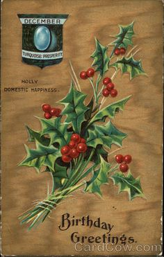December Birthday Greetings - Turquoise : Prosperity - Holly Domestic Happiness