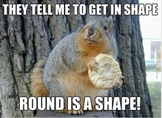 Don't worry about the shape can wait but food can't. #Funny #Humor #ShapeHumor
