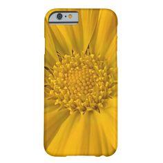 Vibrant Yellow Gazania iPhone case. $61.95