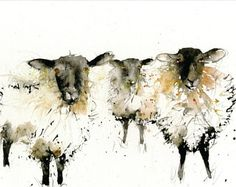LIMITED edition print of my original watercolour SHEEP