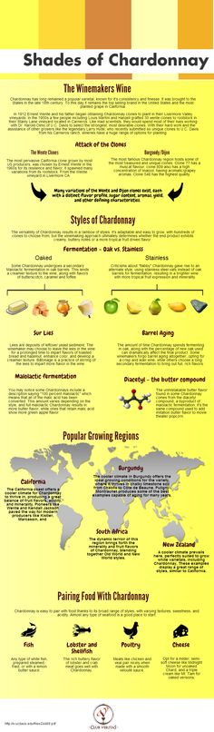 Shades of Chardonnay [Infographic]