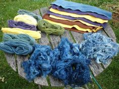 beginner's guide to natural plant dying. She covers many types of plant dyes Shibori, Fabric Yarn, How To Dye Fabric, Dyeing Fabric, Textile Dyeing, Fabric Crafts, Natural Dye Fabric, Natural Dyeing, Fibre And Fabric