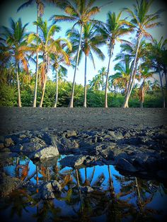 Punaluu Black Sand Beach, The Big Island, Hawaii.