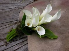 "Maybe one day.... a boy will listen when I say ""white lilies are my favorite flower"" <3"