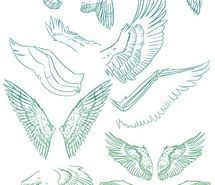 angel wings, drawing, how to, wings, рисунок, birds.