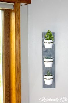 Diy - Hanging Succulent Planter