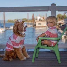 perro y niño famosos instagram