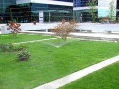 Sisteme de irigatii, eco-horticultura servicii Horticulture
