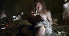 Humans Vs. Neanderthals: How Did We Win?   How Neanderthals disappeared is still a mystery, but investigate some theories about how humans won. Animals That Hibernate, Human Dna, Early Humans, Human Evolution, History Museum, Paleo Diet, Meat Diet, Natural History, Fossils
