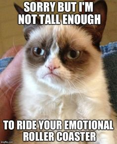 Emotional roller coaster, grumpy cat funny picture.