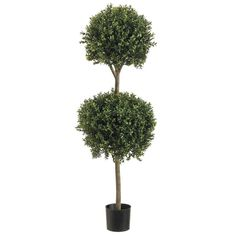 You are buying Boxwood two Ball Topiary Artificial Tree With Real Wood Trunk In Weighted Pot for Years Of Indoor or Outdoor Use. Boxwood two Ball Artificial Topiary With Real wood Trunk in Weighted Pot. Boxwood Tree, Boxwood Topiary, Topiary Trees, Front Door Paint Colors, Painted Front Doors, Artificial Topiary, Artificial Plants, Plastic Pots, Faux Plants