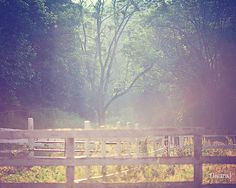 Landscape Photography  Vintage Inspired and Dreamy by DreamyPhoto #fpoe
