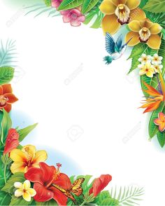 Background from tropical flowers and leaves Illustration , Butterfly Background, Flower Background Wallpaper, Background Vintage, Flower Backgrounds, Tropical Background, Tropical Frames, Tropical Flowers, Vector Graphics, Vector Free