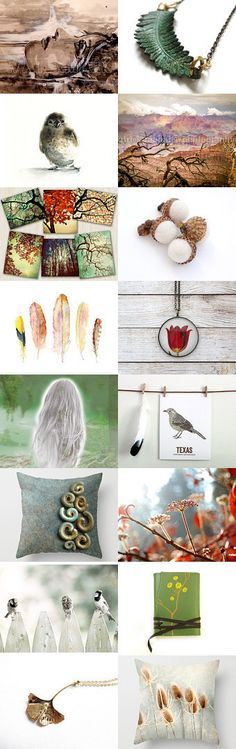 Nature photography by Elinor Levin on Etsy--Pinned with TreasuryPin.com